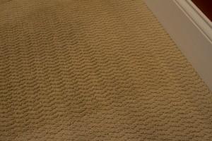 Carpet Cleaning Langenwalter